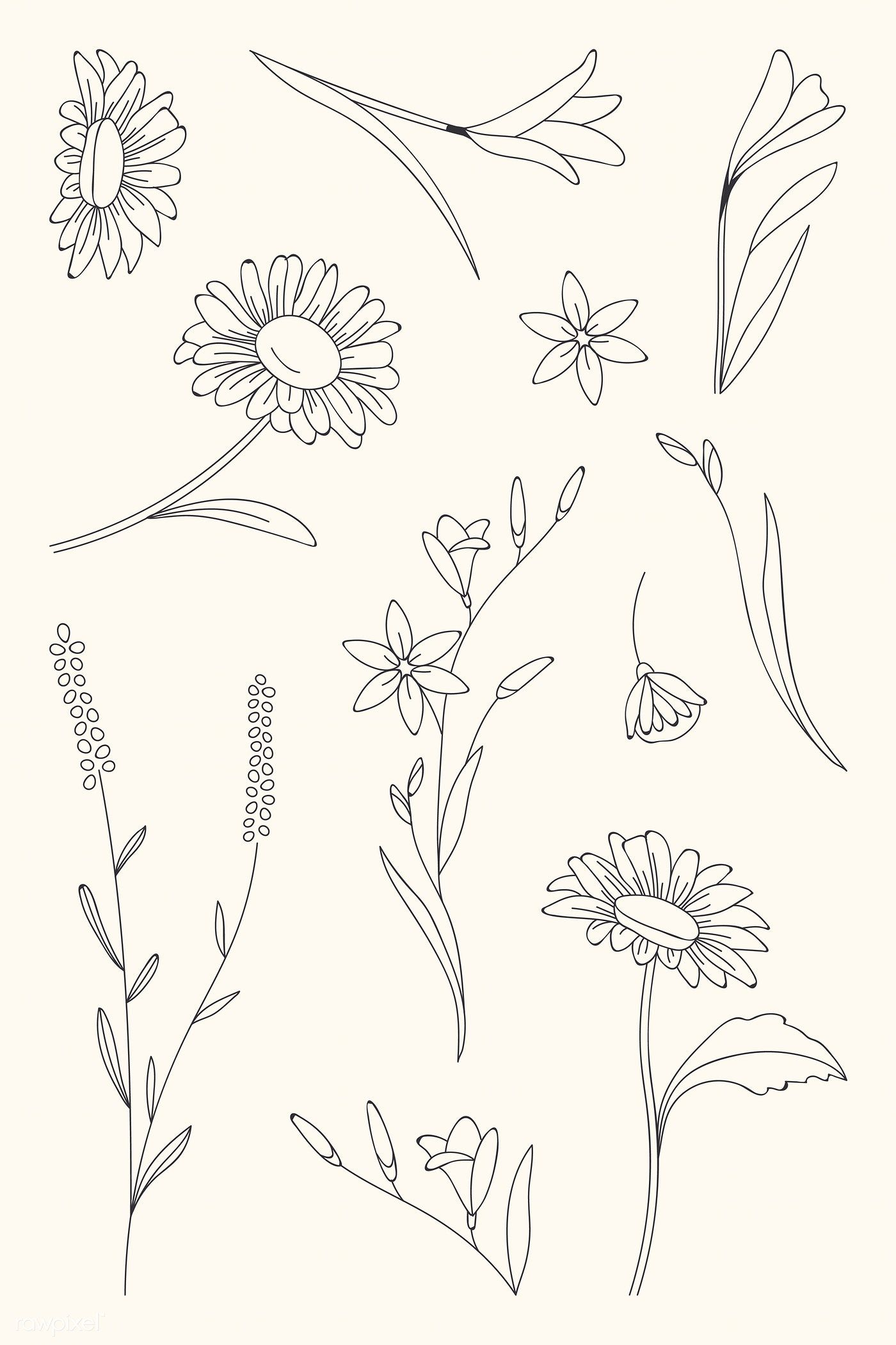 Download Premium Vector Of Hand Drawn Flower Patterned
