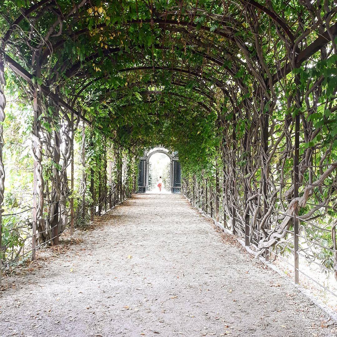 Garden Jardin Chateau Castle Garten Autriche Austria Osterreich Schloss Schonnbrunn Schonnbrunnpalace Green Vert Nature F Sidewalk Structures