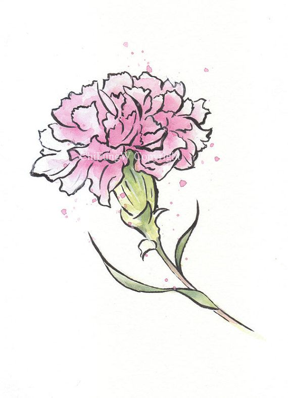 Japanese Japanese Watercolor Sumie Watercolor Painting Flower Art Red Carnation Watercolor Print Carnation Drawing Carnation Flower Tattoo Flower Drawing