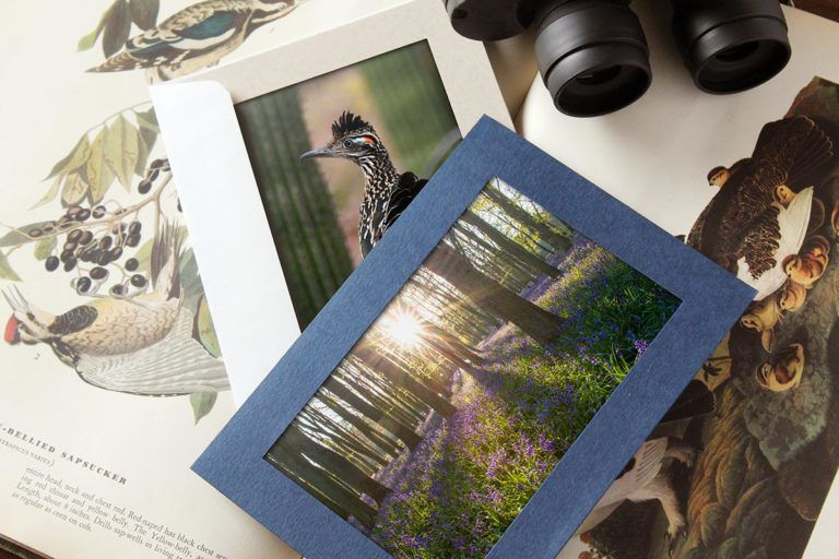 How To Sell Your Nature Photography Card Photography Selling Photography Prints Photo Insert Cards