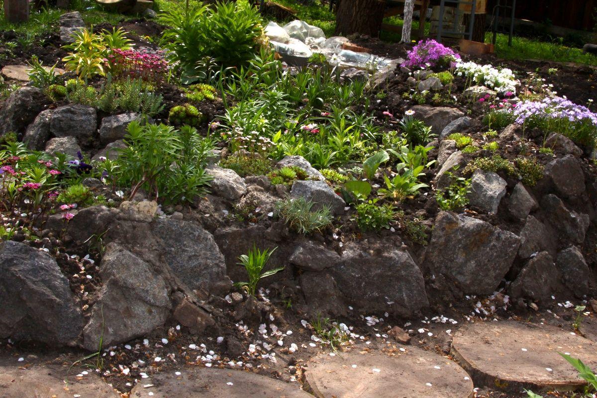 Alpine Hill Photo Landscaping With Rocks Backyard Hill Landscaping Rock Garden