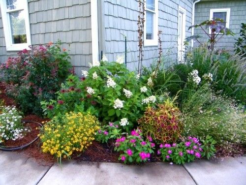 Landscape border idea oak leaf hydrangea garden for Front porch landscaping plants