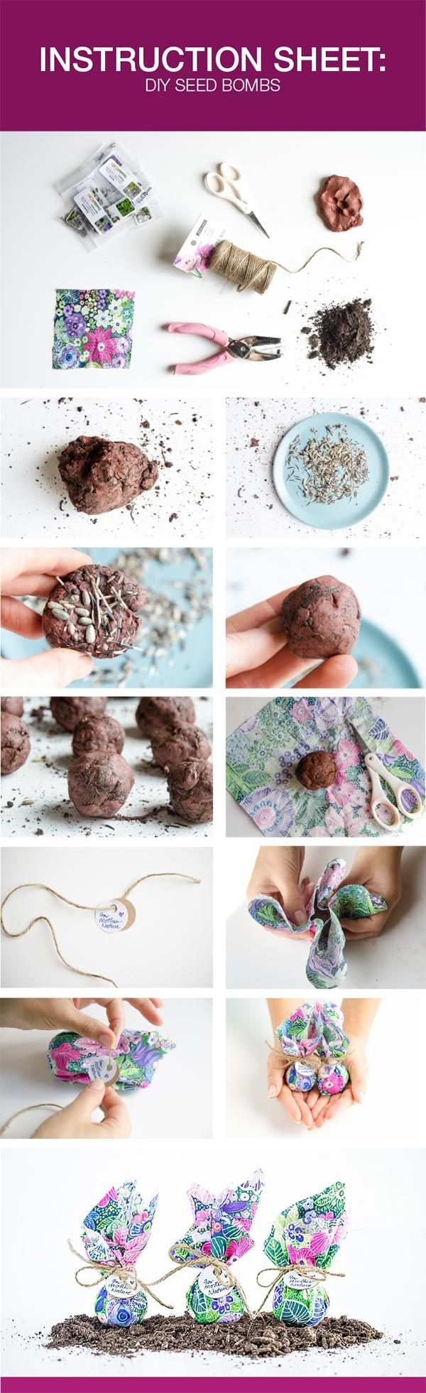 DIY Seed Bombs for Earth Day - Natural Vitality Living | Great Ideas ...