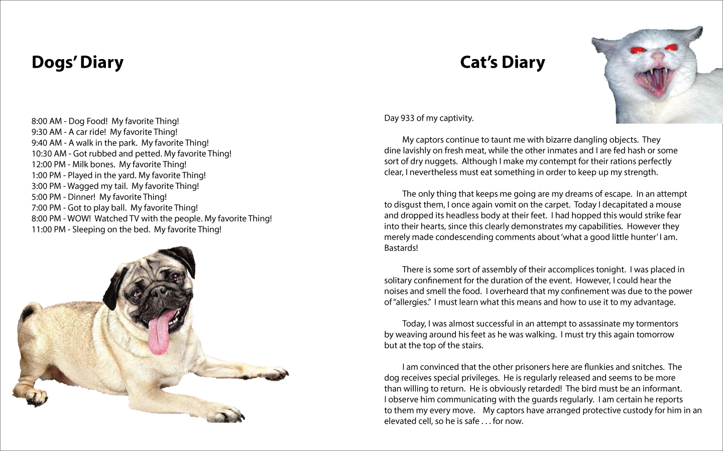 Cats & Dogs Cat diary, Dog food recipes, Dogs