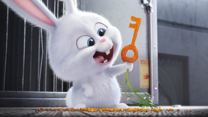 Download Snowball Carrot Key The Secret Life Of Pets 3840x2160
