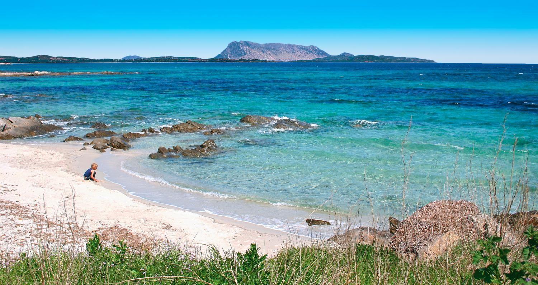 """S. Teodoro è la meta ideale per  una vacanza al mare: spiagge splendide, mare cristallino, una natura ancora selvaggia e tanto divertimento! Le spiagge vantano fondali bassi e una sabbia fine. Celebre è la Cinta, oltre 5 km di lunghezza con dune di sabbia bianca e in prossimità dello """"Stagno"""" con i fenicotteri rosa; Cala Brandinchi nota come la piccola """"Tahiti"""" per la trasparenza dei suoi fondali e la spiaggia dell'Isuledda, un piccolo lembo di sabbia bianca con mare trasparente e paesaggio…"""