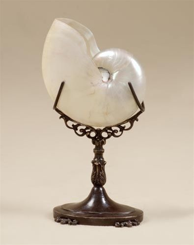 High End Nautical Shell Decorations Quality Furniture Luxury Home Accessories Nautilus On