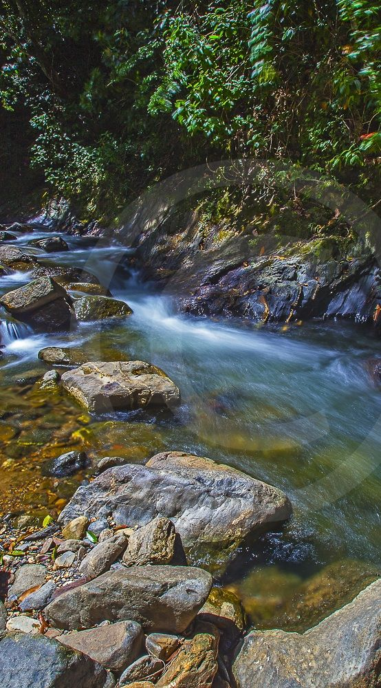River In Trinidad Cropped For Pinterest Gregory Scott Photography Landscape Photography Trini River Photography Beautiful Waterfalls Landscape Photography