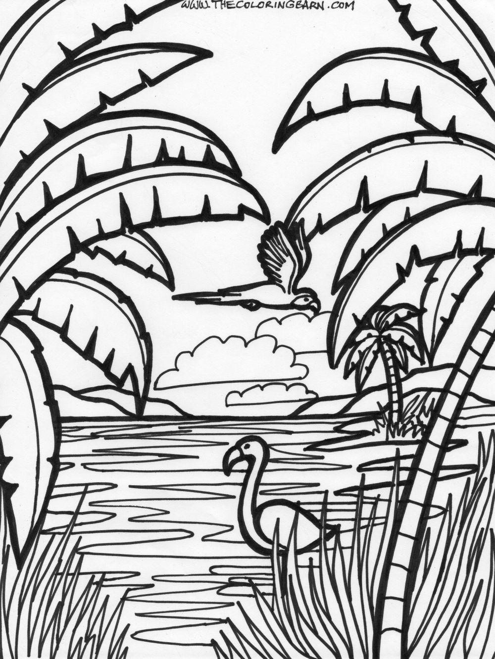 flamingo coloring page   Jungle coloring pages, Animal ...