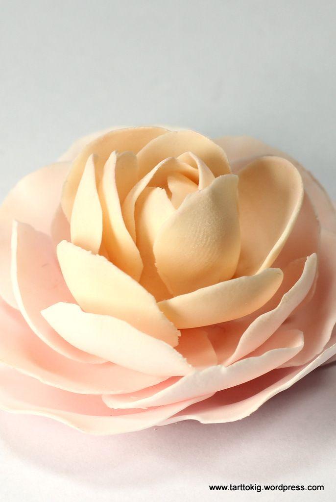 Tutorial Camellia Flower Sugar Flowers Tutorial Fondant Flowers Sugar Flowers