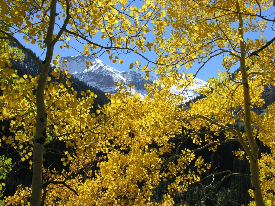 Autumn in Pagosa Springs, CO