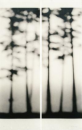 Jeri Eisenberg-'Loon Lake, No. 4'-Kathryn Markel Fine Arts