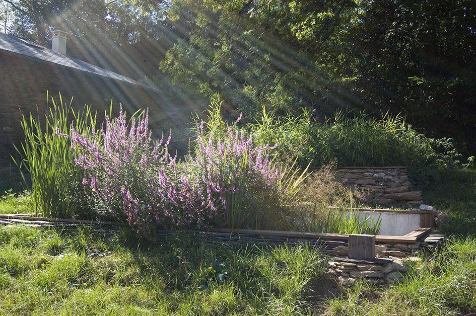 Jardin du0027assainissement dans le Sud Ouest Gardening Pinterest - assainissement d une maison