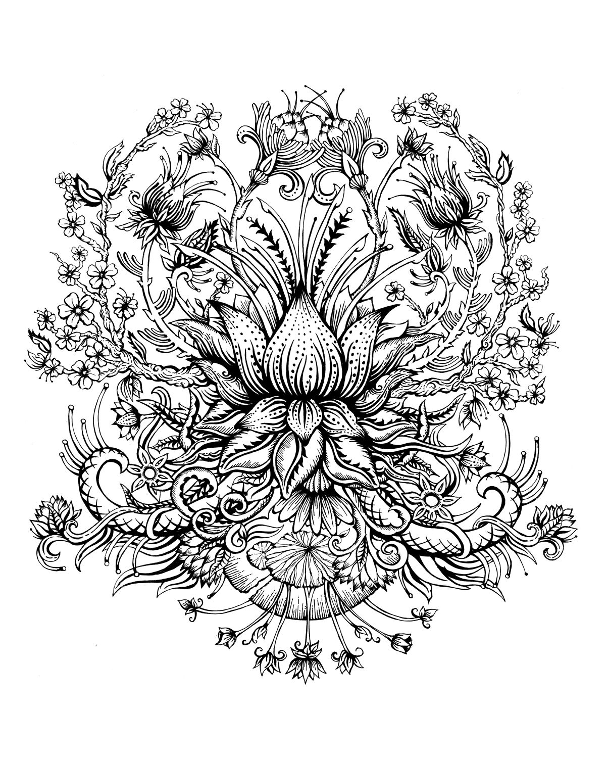 Lotus Flower Drawing Design Five 990