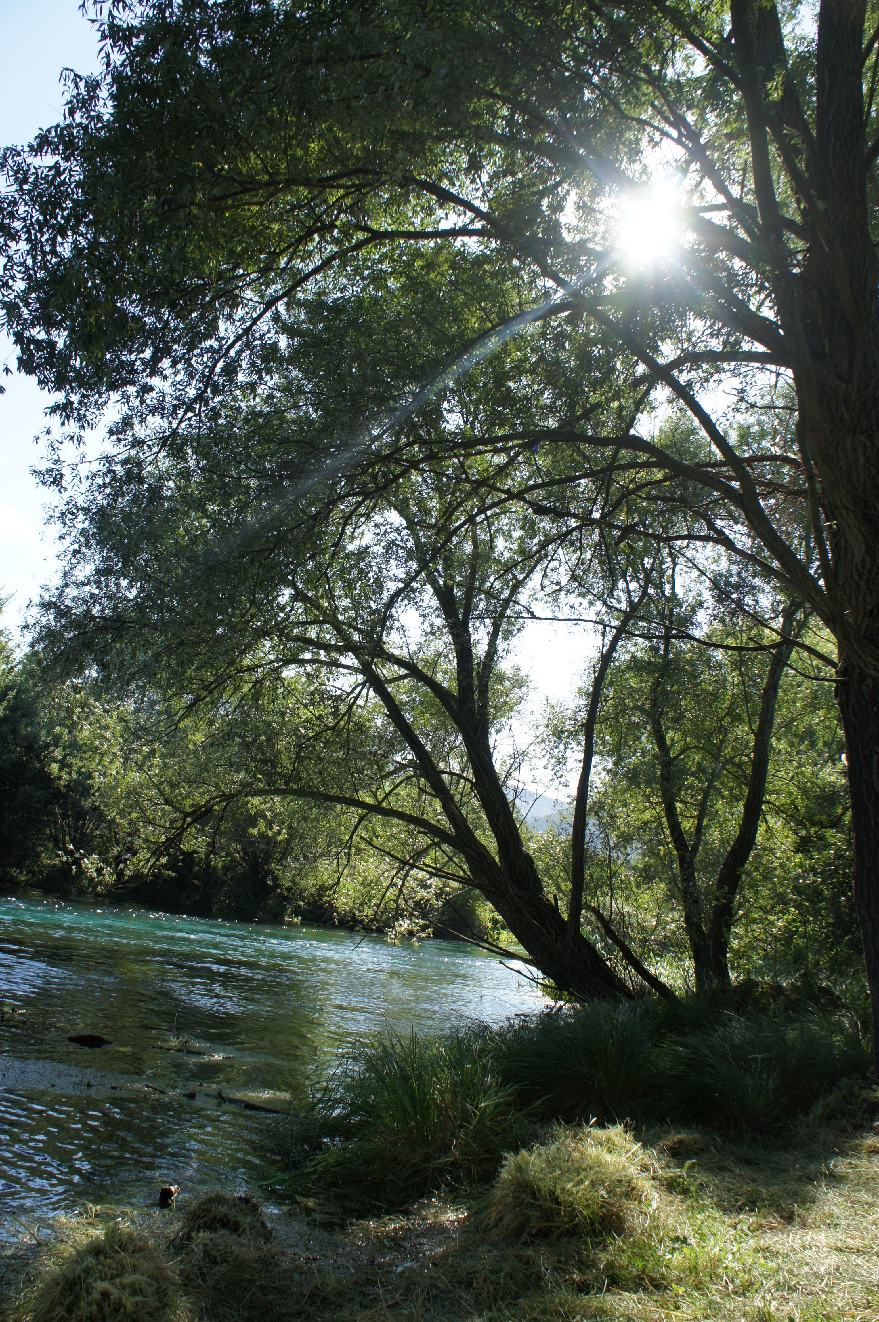 Capestrano, Italy.  Trees over a river in the small town.  Watch out...the water is freezing!