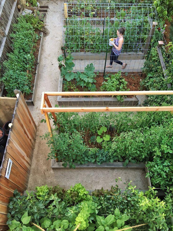 Wir halten dieses Bett das ganze Jahr über voller Gemüse, aber nichts geht über den Sommergarten ... - Garten #veggiegardens