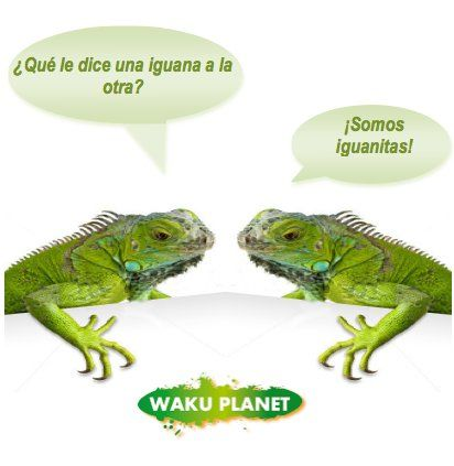 Pin By Wakuplanet Com On Wakublog Humor Humorr Memes