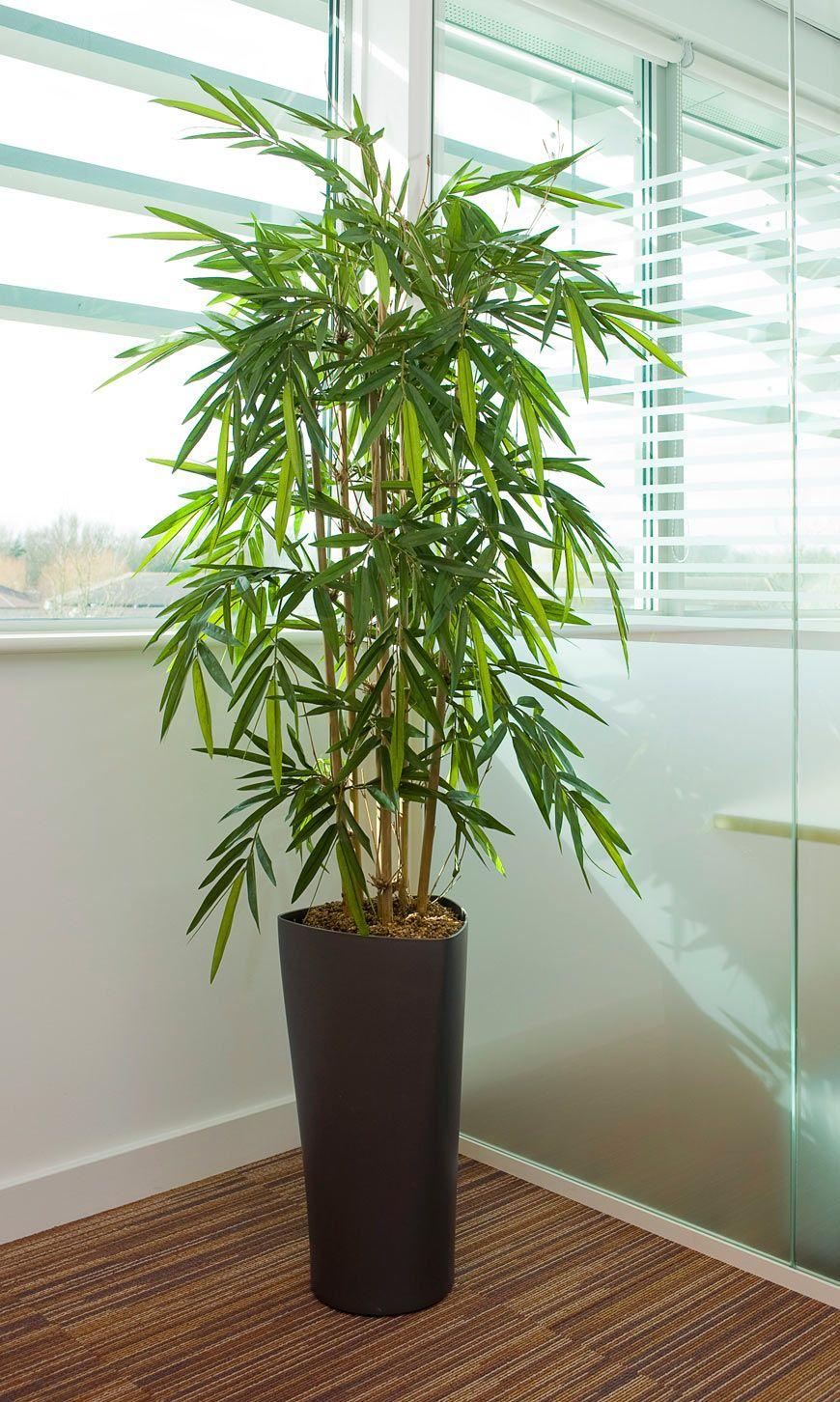 Artificial Bamboo In Delta Pot Artificial Plants Indoor Small Artificial Plants Artificial Plant Wall