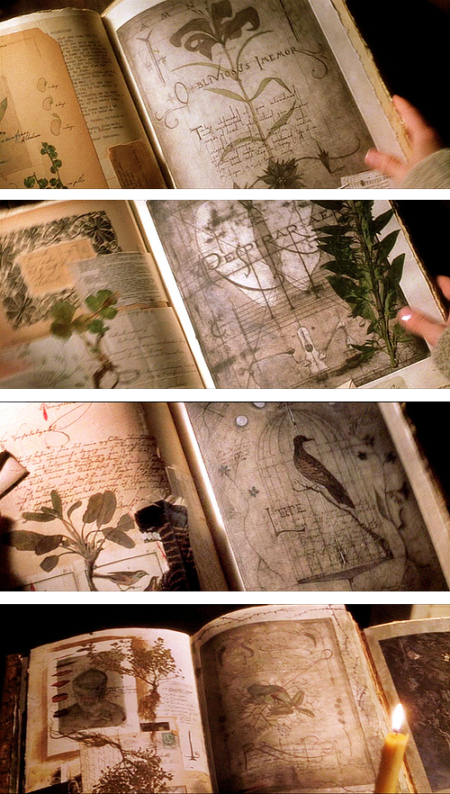 Book of shadows inspiration practical magic film never thought book of shadows inspiration practical magic film never thought to be creative if i make one good idea fandeluxe Image collections
