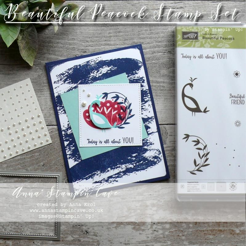 stampin' up beautiful peacock with images  cards card
