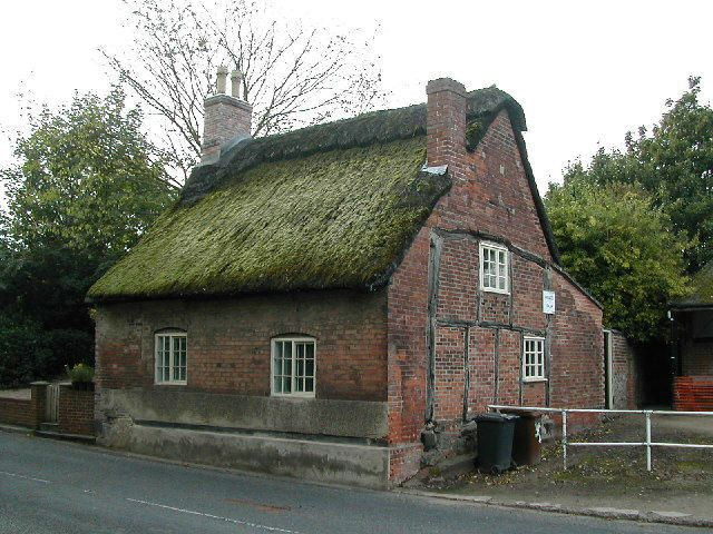 Moss Growing On Thatched Cottage Roof