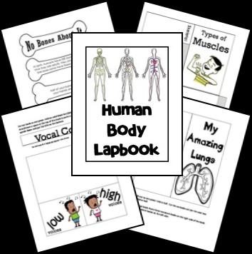 FREE Human Body Unit + Link to Circulatory Game pdf