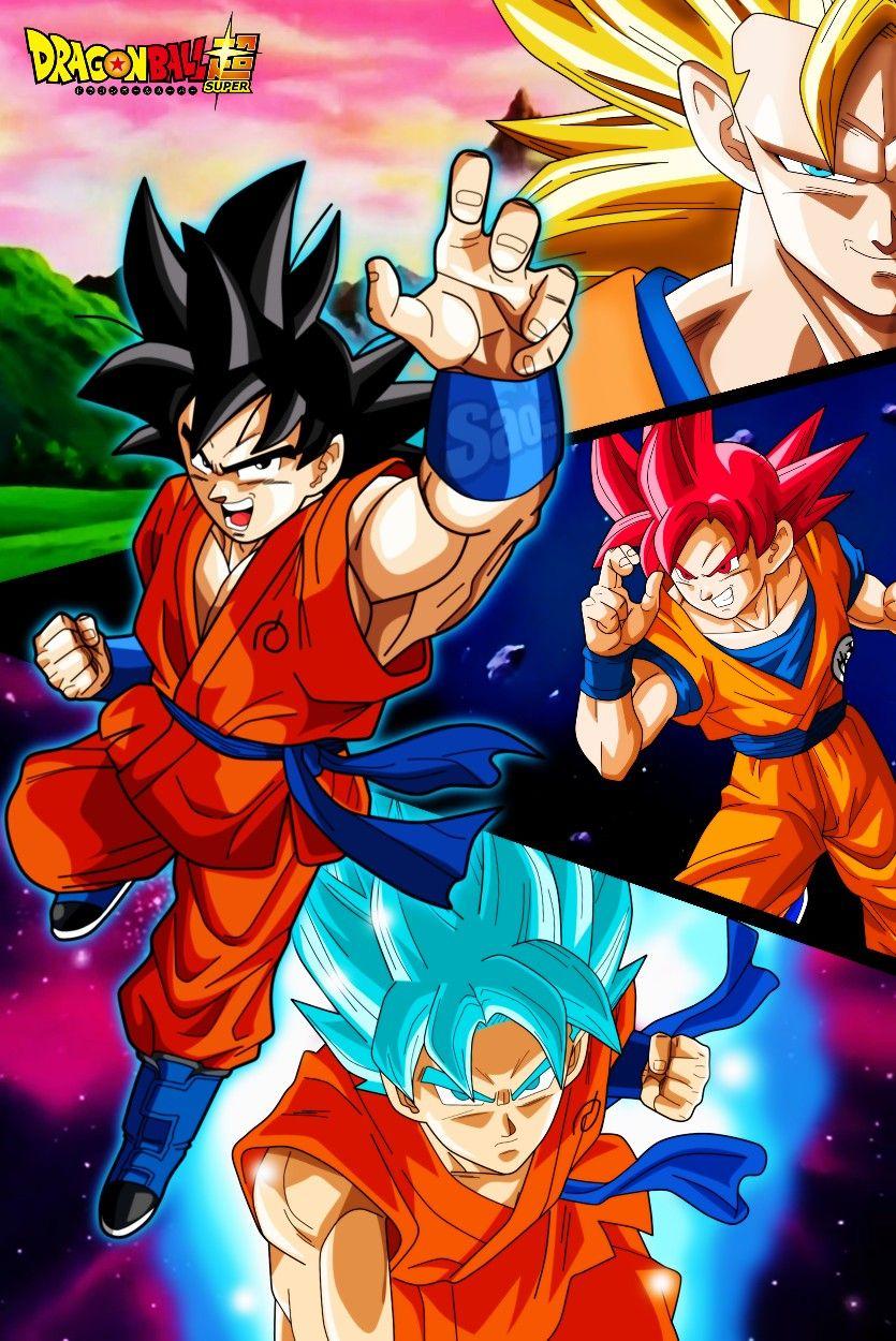 Goku Transformaciones Anime Dragon Ball Super Dragon Ball Super Goku Dragon Ball