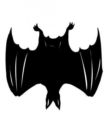 Spooky Silhouettes Bat Pumpkin Bat template, Bat silhouette and - bat template