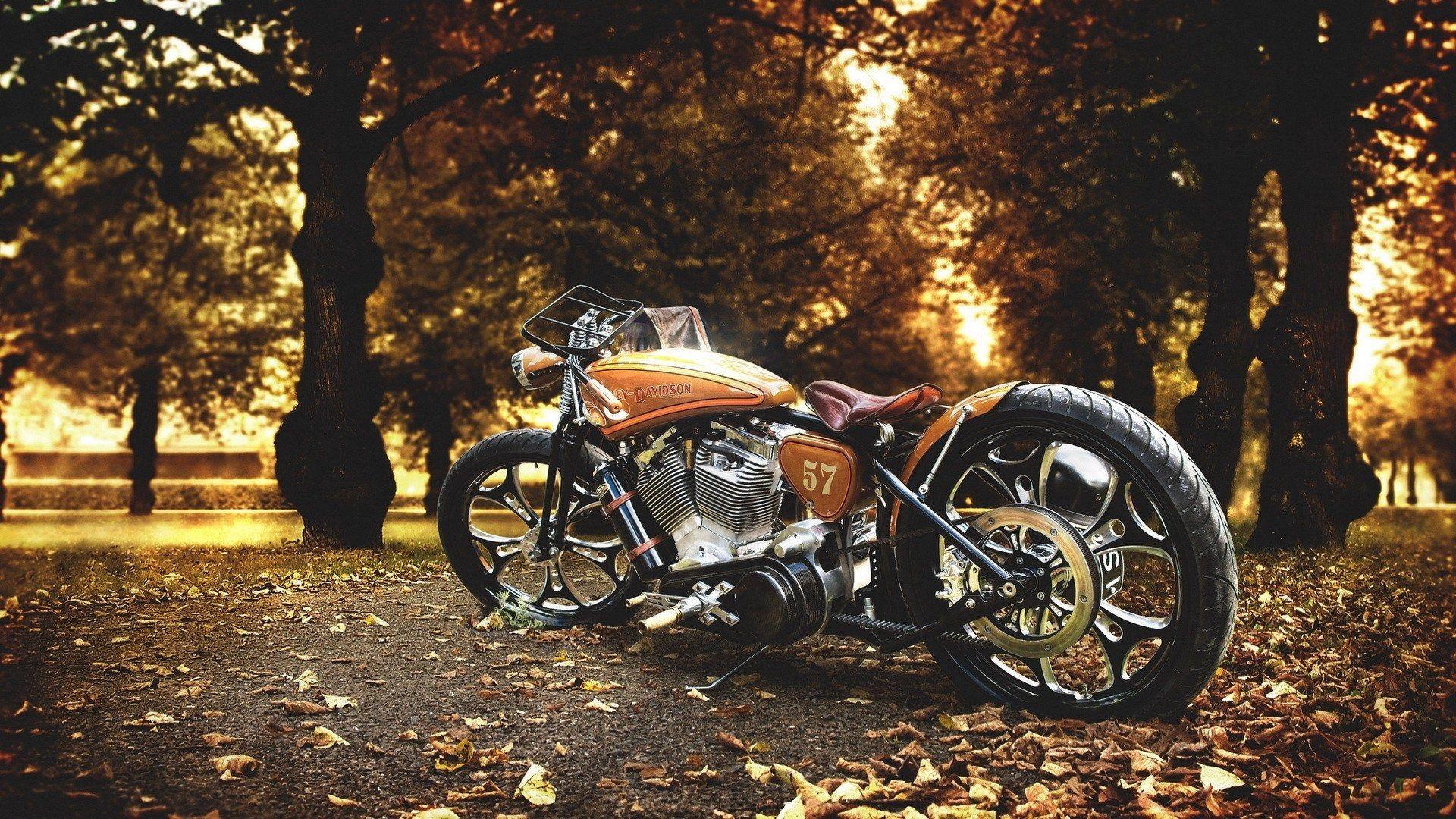 1920x1080 Harley Davidson Best Hd Wallpaper Desktop Harley Davidson Wallpaper Motorcycle Wallpaper Harley Davidson Photos