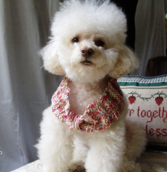 Pretty n Pink........Collar cover Neck warmer by CanineCoutureLTD, $20.00