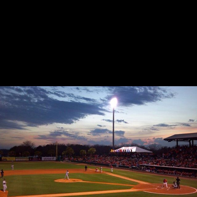 seeing the riverdogs play on the ashley river is an experience you ll never forget the hot dogs featured on man vs food with adam richman will