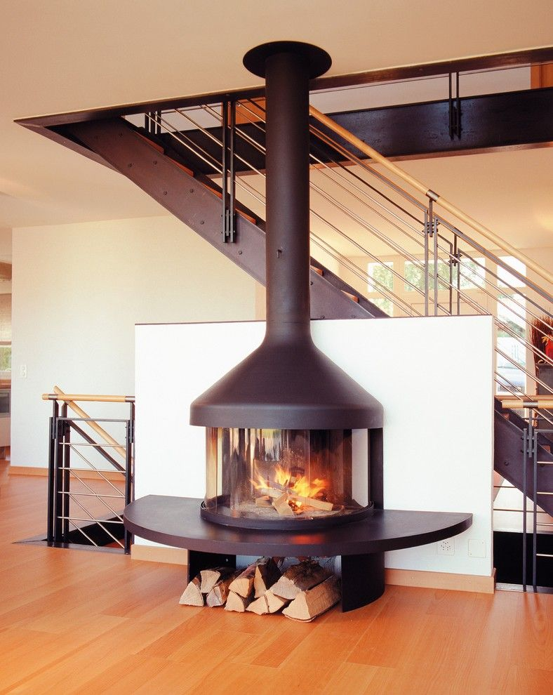 Free Standing Wood Burning Fireplace Living Room Contemporary With