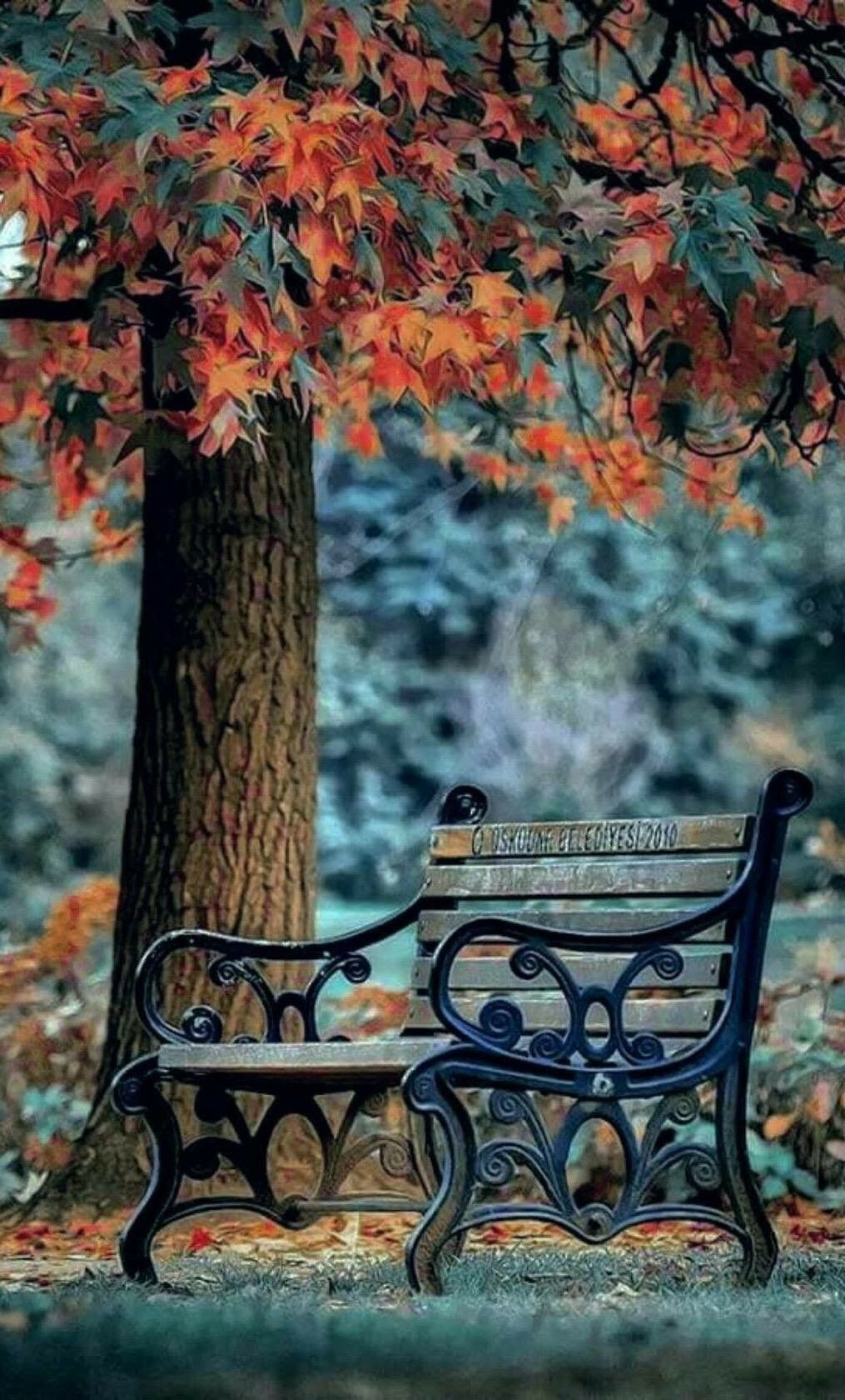 Sitting Background