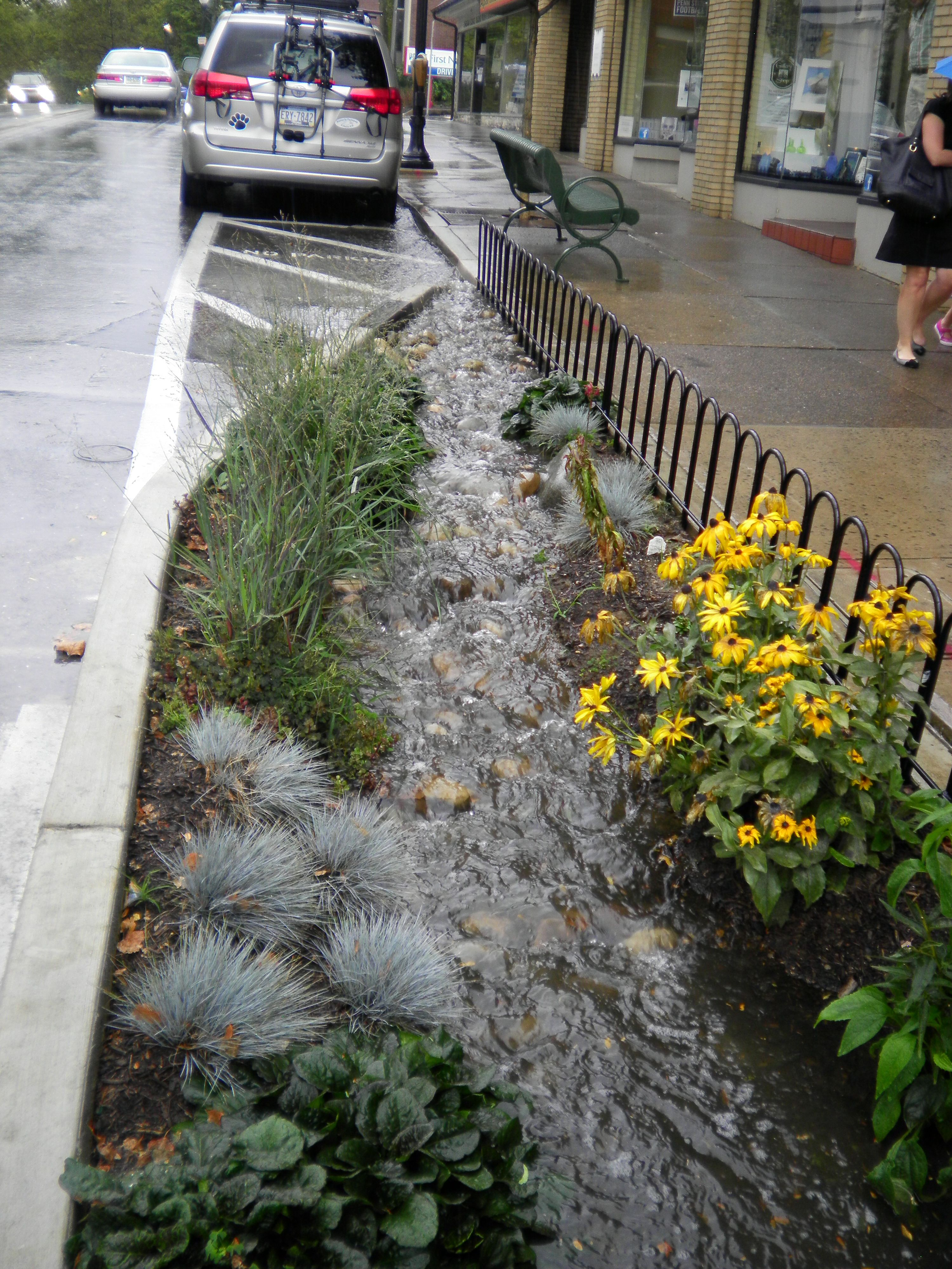 City Street Rain Gardens That Celebrate The Function Of An