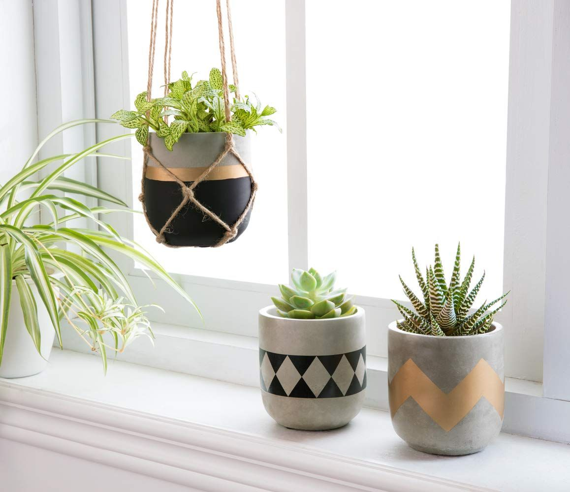 Mkono 4inch Cement Succulent Planter Modern Flower Pots Mini Planter Indoor For Cactus Herb Or Small Plants Set Of 3 Planters Succulent Planter Small Plants
