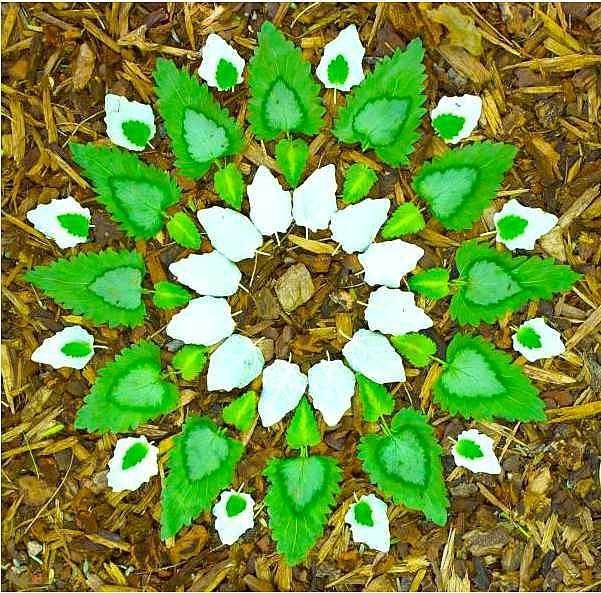 Mandalas de pétales et de feuilles  Les cahiers de Joséphine is part of Nature mandala, Mandala art, Nature art, Flower mandala, Land art, Mandala - Il faut du temps, de la patience et un certain goût pour les compositions de végétaux  Et puis aussi du talent pour associer les couleurs et