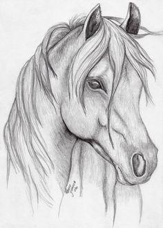 Horses   FixItMomAZ   Digital Drawing   PENUP