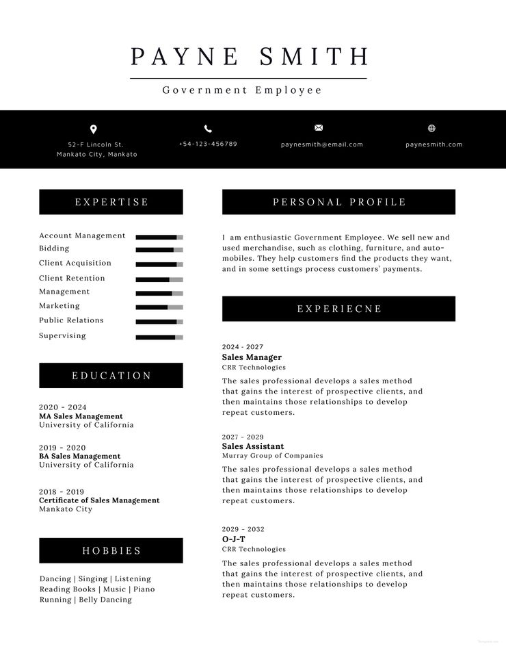 Free Official Resume Templates Good Resume Examples Effective