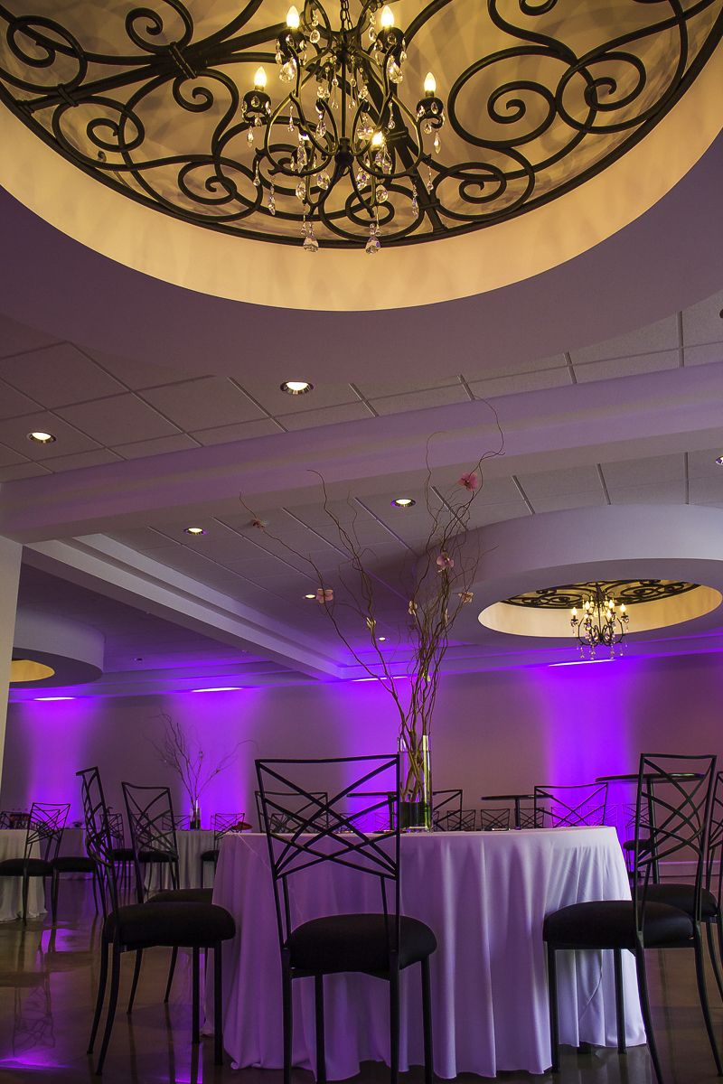 Event Photography | Fayetteville, NC | http://nicolemariehope.com/blog/2013/5/10/fayetteville-young-professionals-shag    #iron #beautiful ceiling #purple uplighting #tree branch #centerpiece