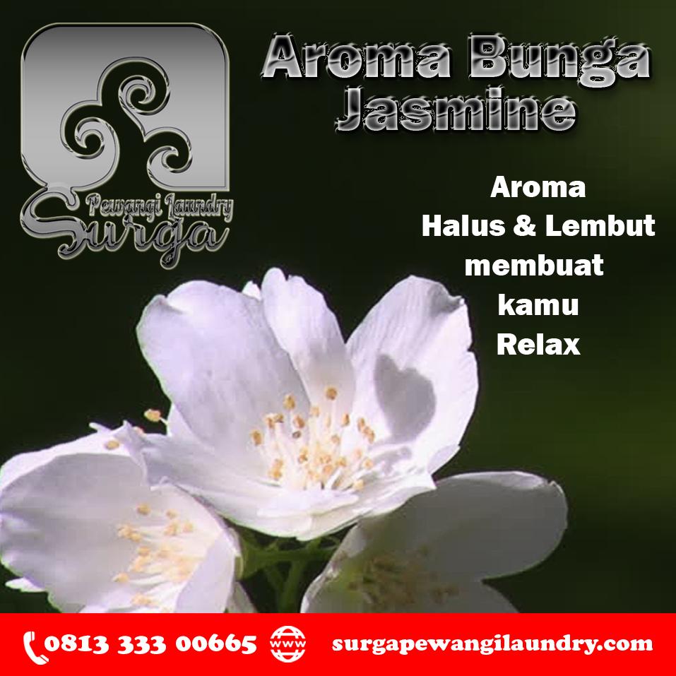 Produsen Parfum Laundry Parfum, Wewangian, Jasmine