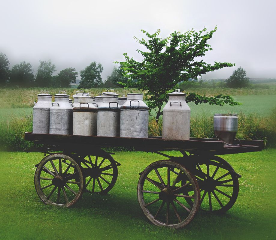 Old milk cans on waggon with images old milk cans