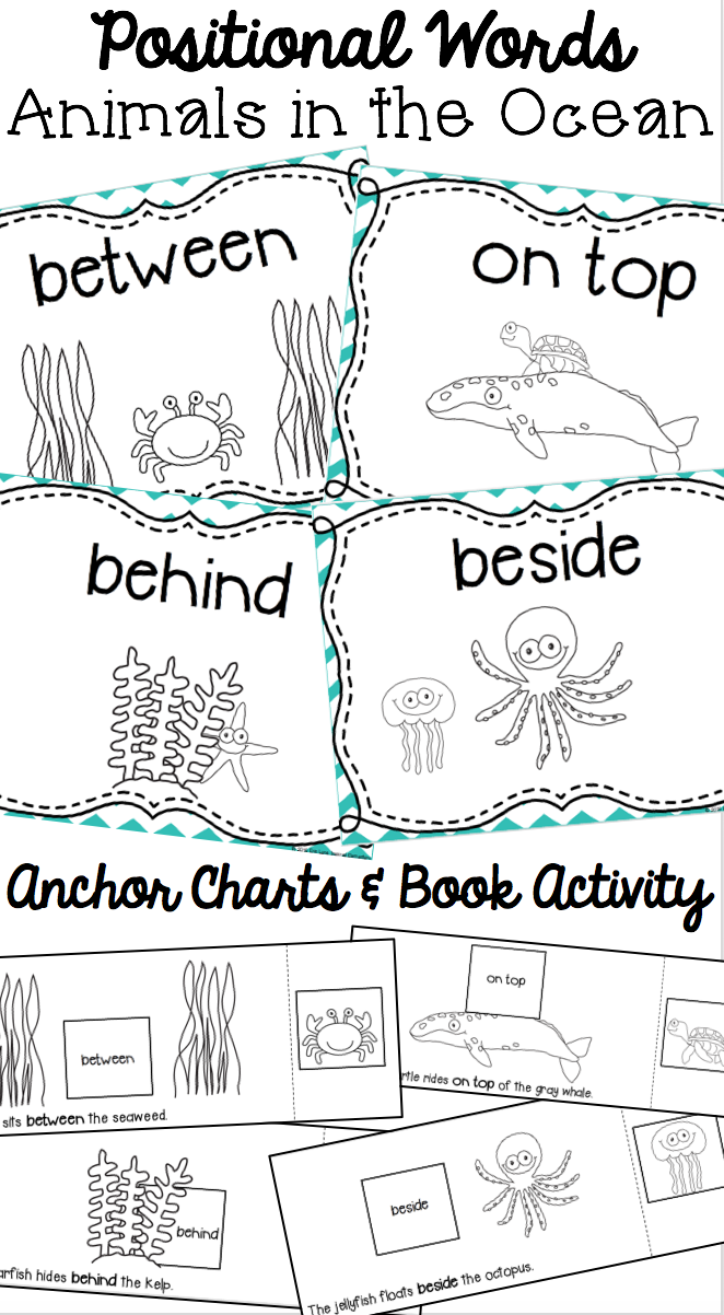 Positional Words Book Animals In The Ocean Positional Words