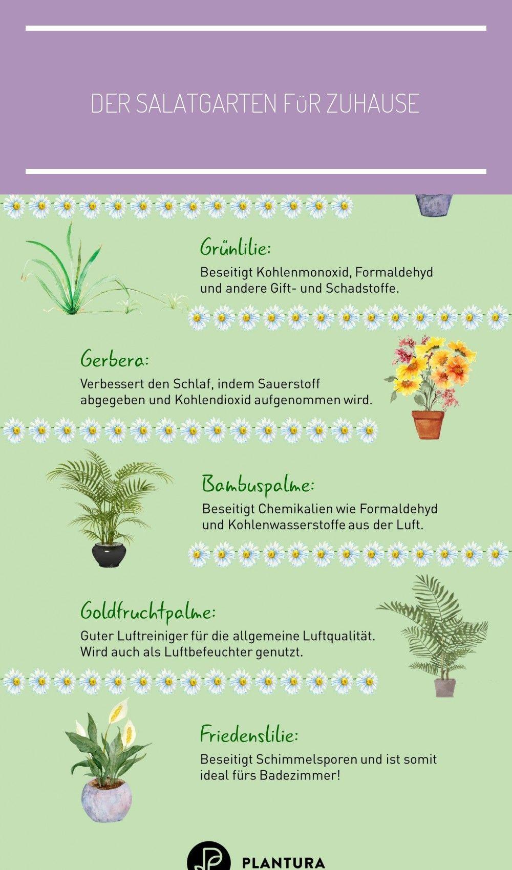Der Salatgarten Fur Zuhause In 2020 Crochet Basics Basic Crochet Stitches Yarn Over
