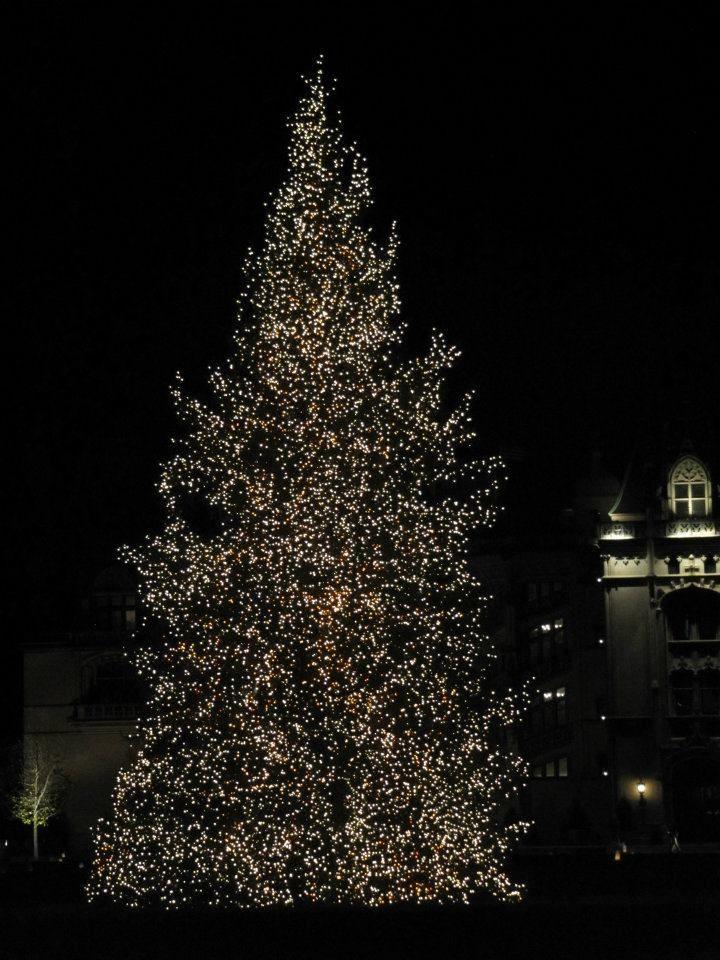 Christmas at the Biltmore Christmas tree Christmas Magic