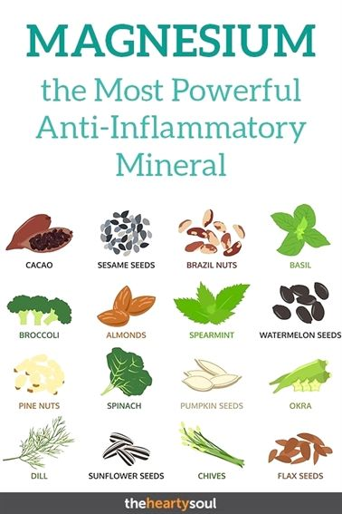 why are #vitamins and minerals essential,  #vitamins and minerals for testosterone production,  vitamins and minerals animation movies,  vitamins and minerals crossword puzzle answers,  vitamins and minerals gifs de amor,  vitamins and minerals ks3 bitesize,  vitamins and minerals are both organic dog vitamins.