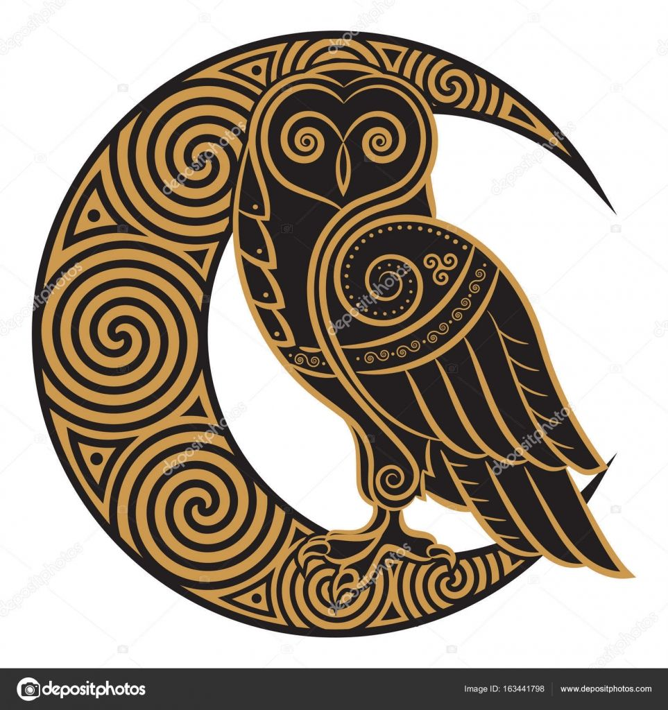 Owl handdrawn in Celtic style, on the background of the