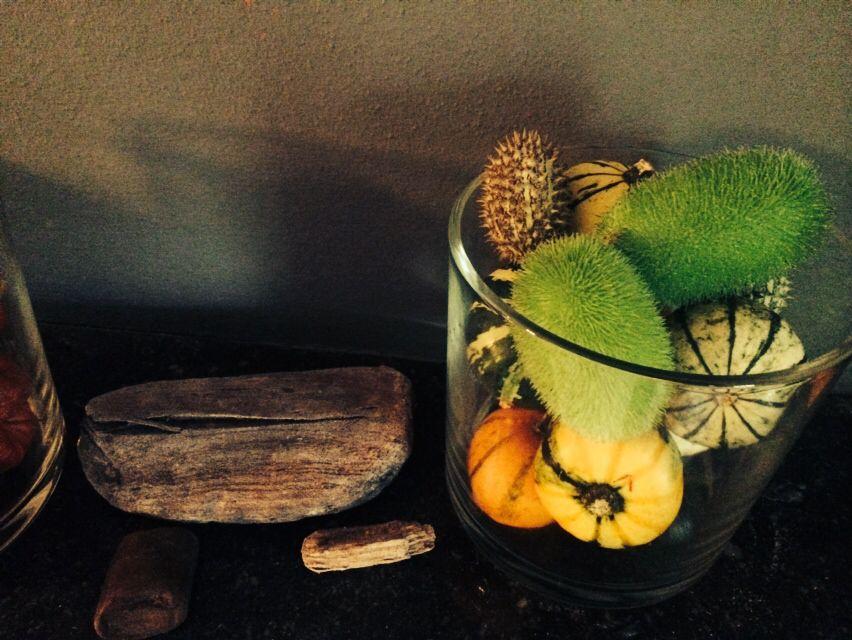 Sierkomkommers en sierpompoenen