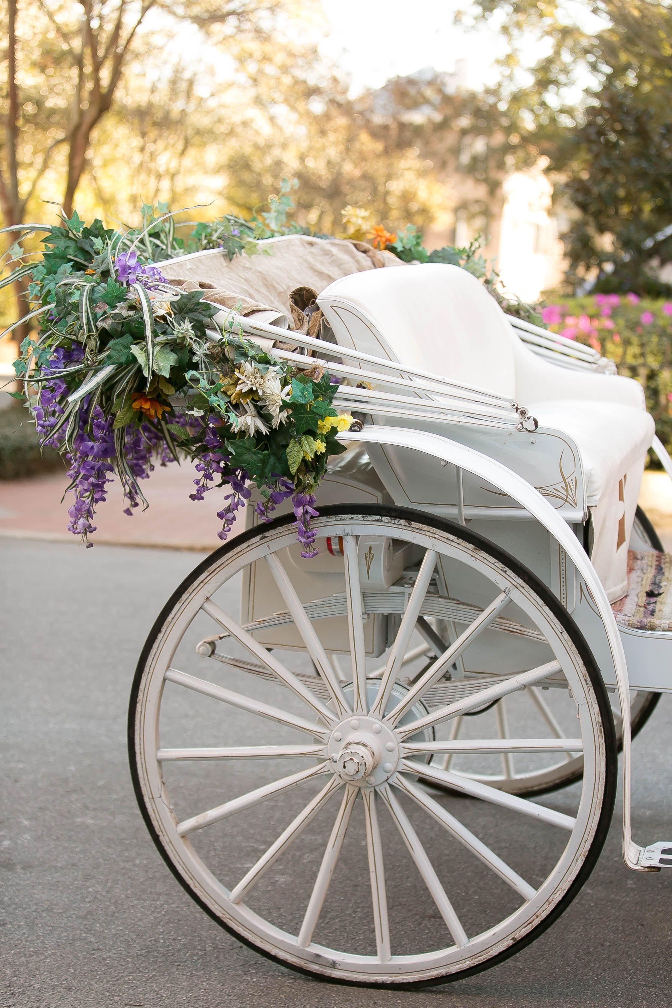 Wedding decorations on cars  Wedding destination wedding horse and carriage wedding Wedding
