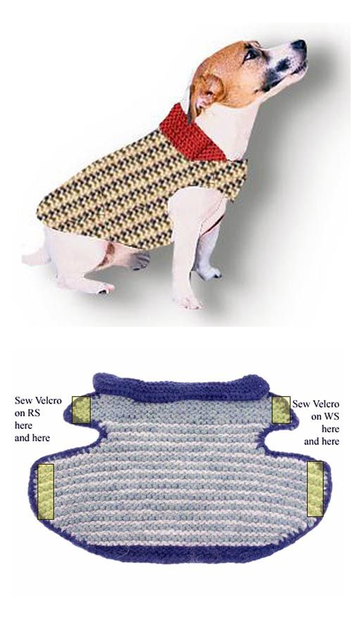Garter Stitch Dog Jacket By Annie Modesitt Paw Some Pinterest