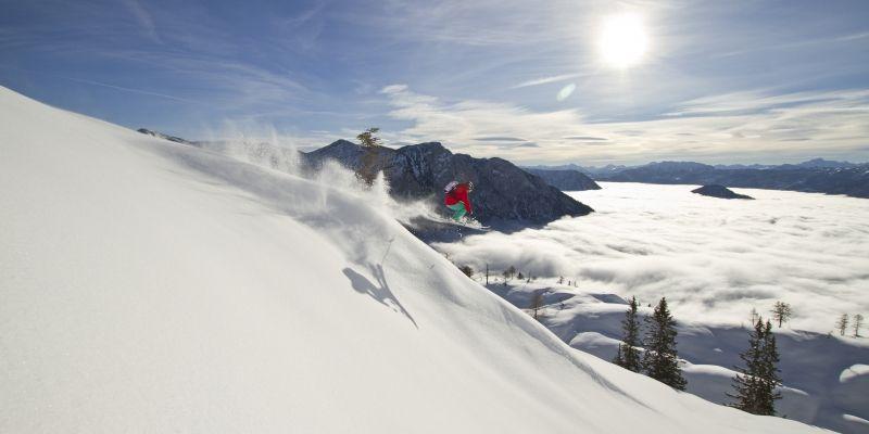 Fischer Sports: Ski Freeski Emotion  11|12